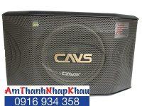 Loa karaoke CAVS A700