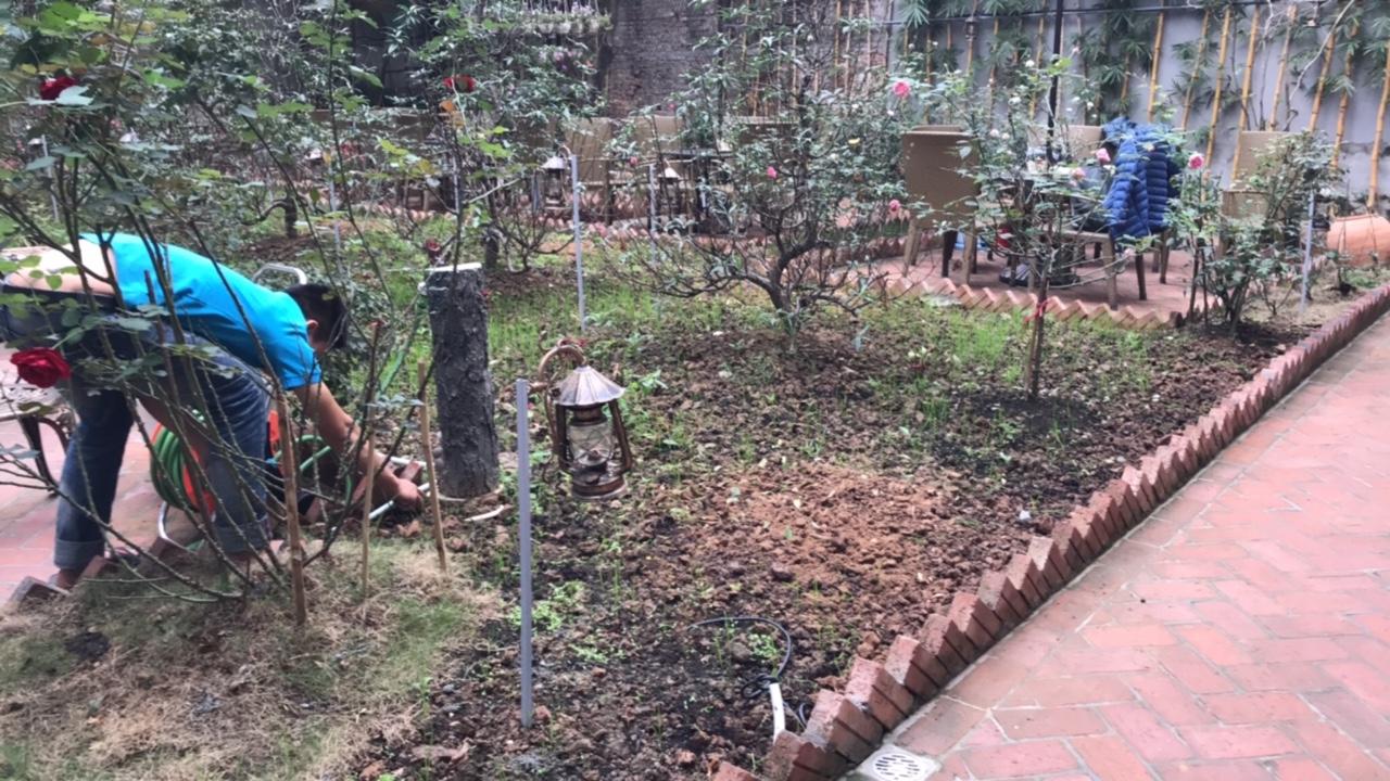 Loa sân vườn,loa giả đá,hệ thống loa trang trí sân vườn là gì ? 1