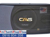 Giá, thông số kỹ thuật của Loa karaoke CAVS A600SE 6