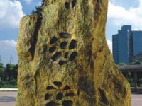 Loa giả đá OBT 1802H chuyên dùng cho sân vườn 2