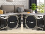 Loa karaoke Paramax D-1000