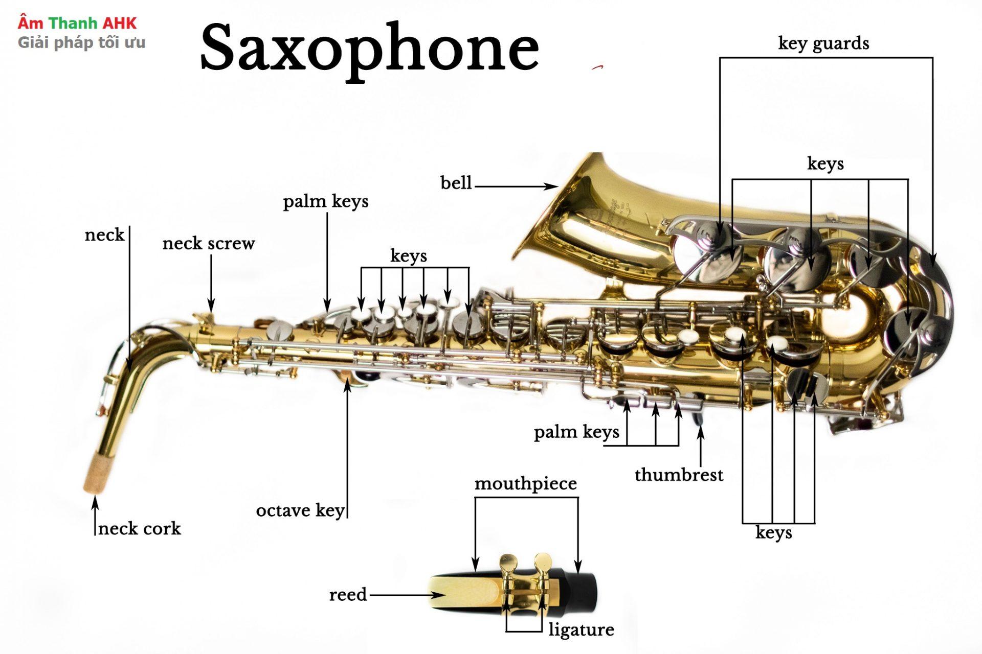 Các bộ phận kèn Saxohpone