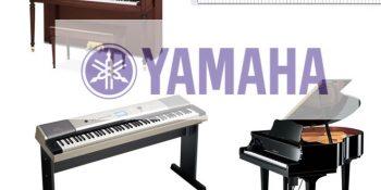 Đàn Yamaha