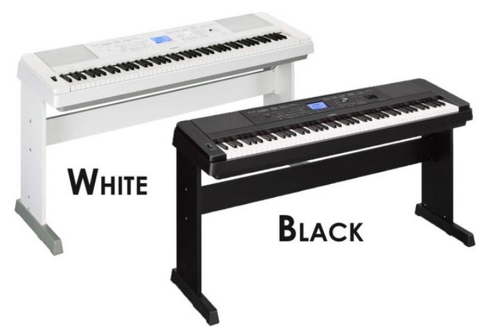 Đàn có hai màu trắng đen