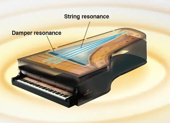 Ưu điểm lớn nhất của DGX-670 là cộng hưởng ảo
