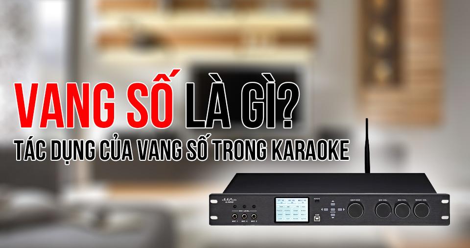 Vang số là gì? Dàn karaoke vang số hát có hay hơn?