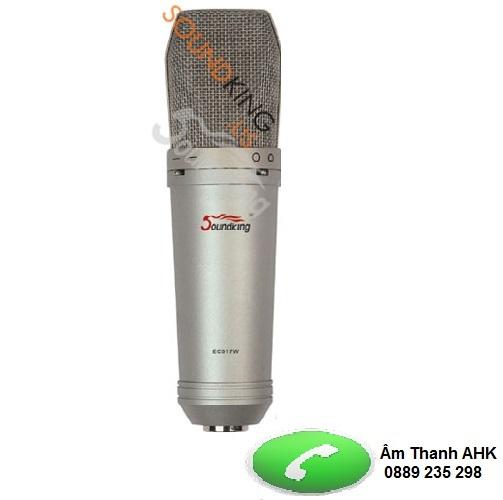 Micro có dây Soundking EC017B/W