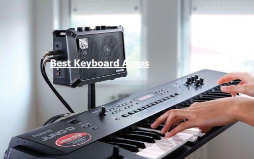Amplifier liền loa cho đàn Organ - Keyboard - Piano